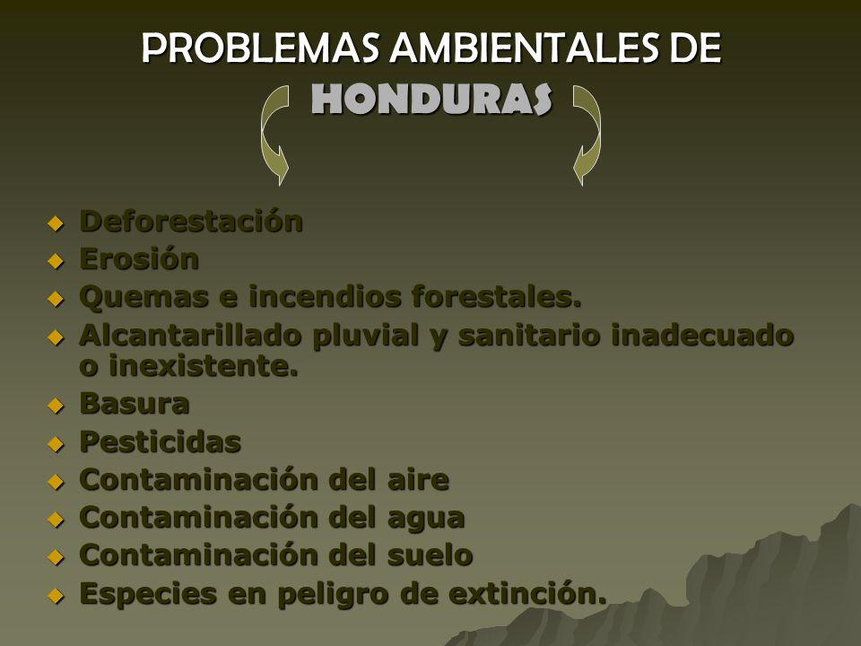 PROBLEMAS AMBIENTALES DE HONDURAS
