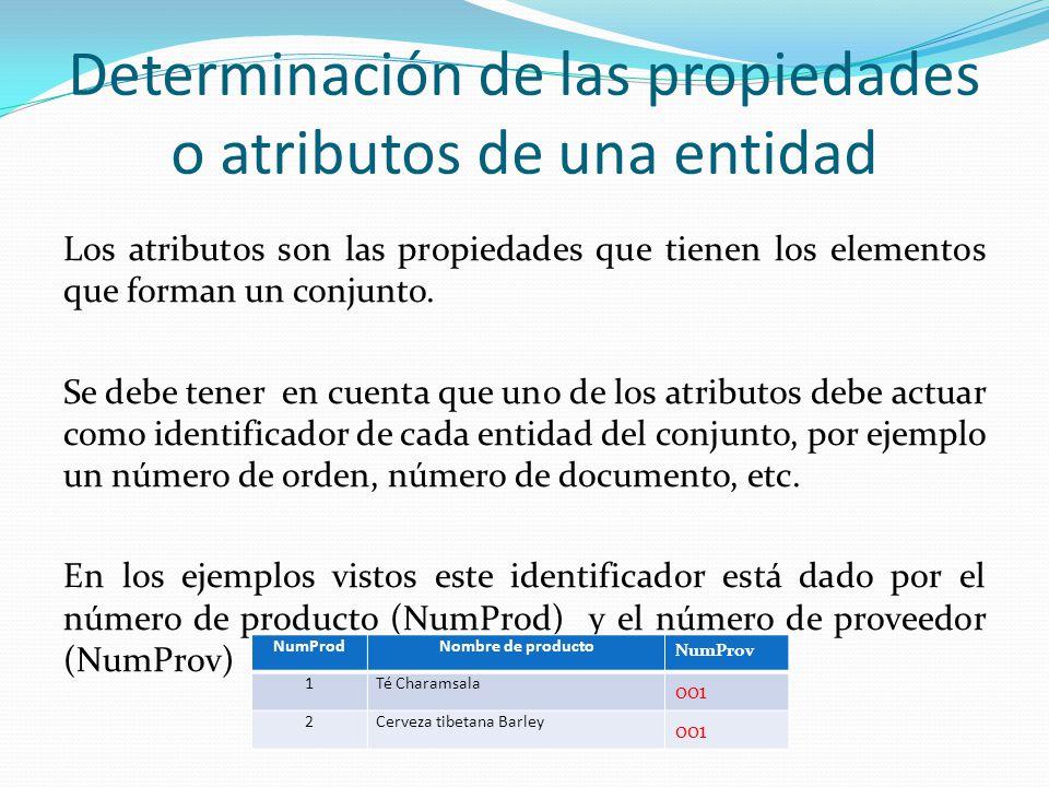 Determinación de las propiedades o atributos de una entidad