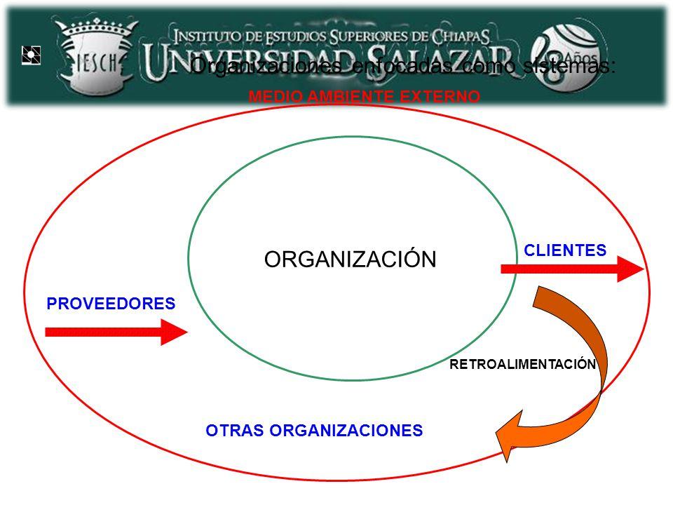 Organizaciones enfocadas como sistemas: