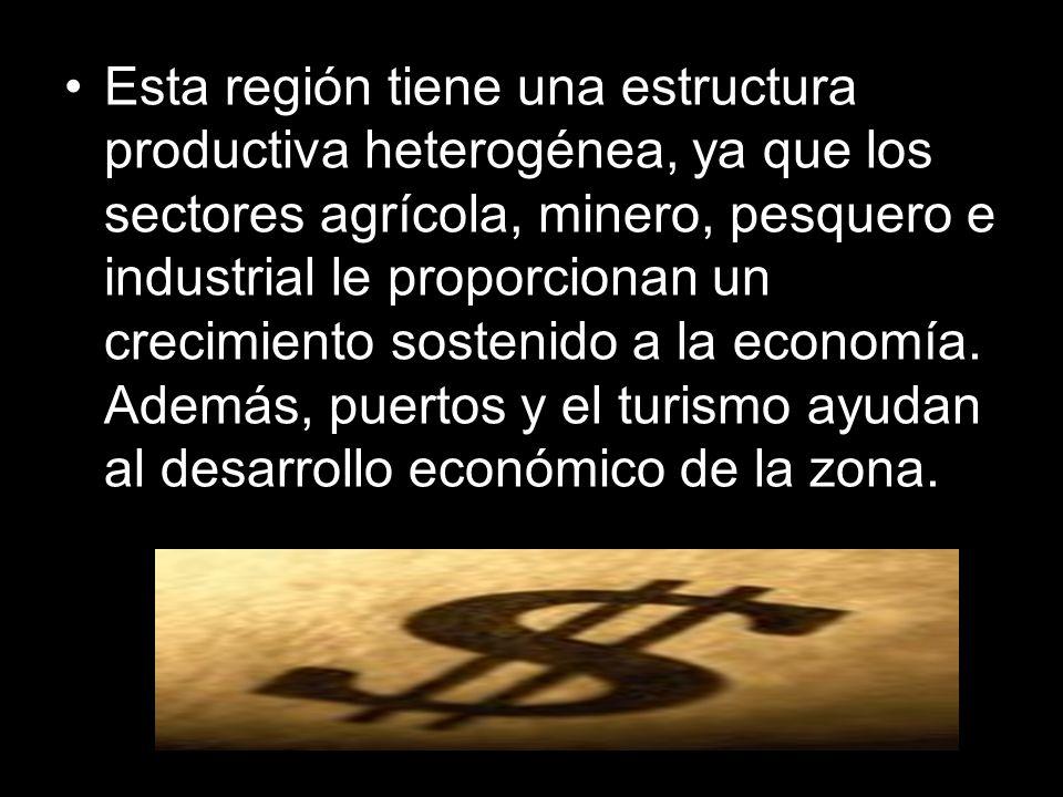 Esta región tiene una estructura productiva heterogénea, ya que los sectores agrícola, minero, pesquero e industrial le proporcionan un crecimiento sostenido a la economía.
