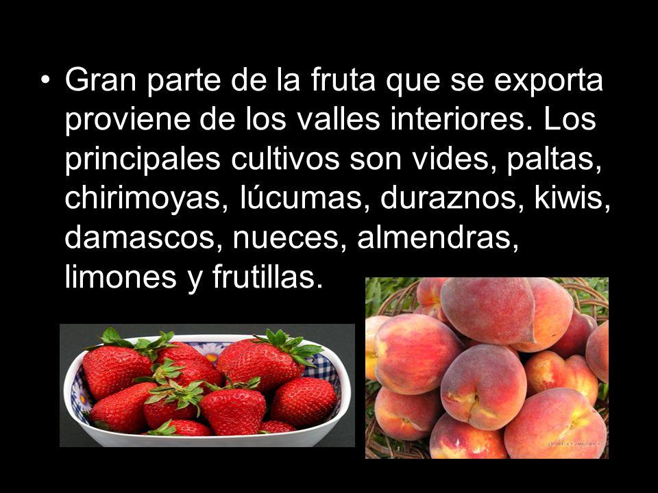 Gran parte de la fruta que se exporta proviene de los valles interiores.