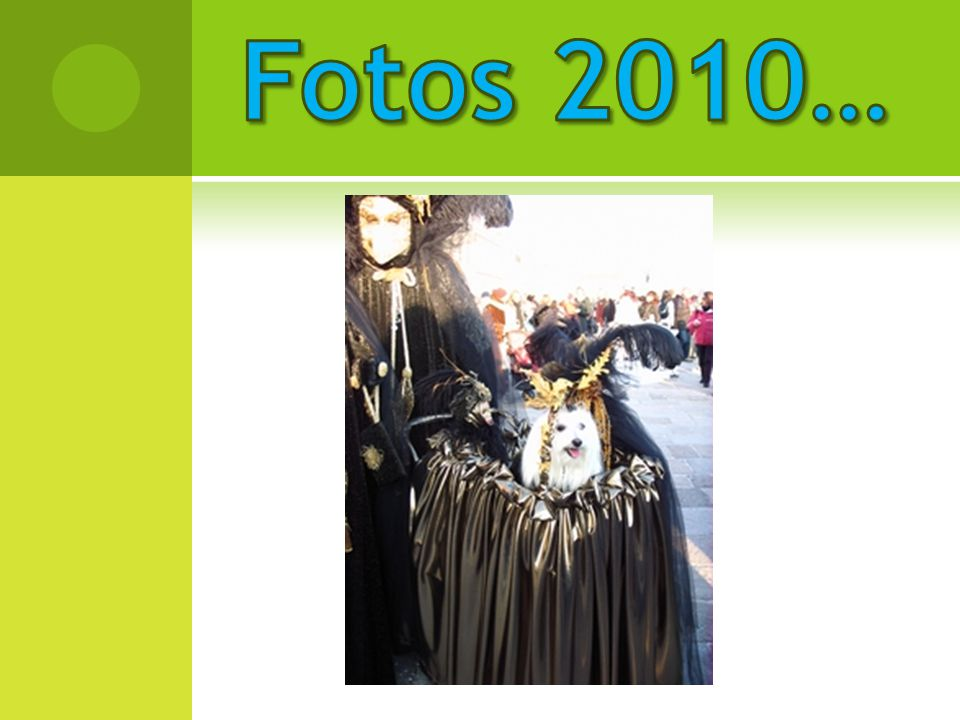 Fotos 2010…