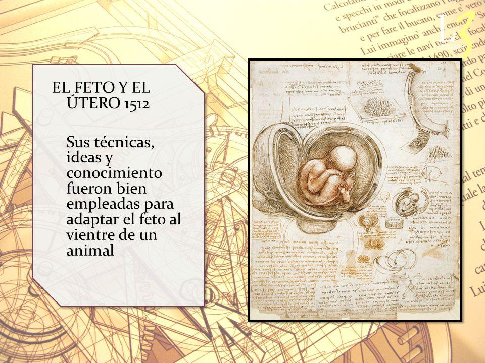 EL FETO Y EL ÚTERO 1512 Sus técnicas, ideas y conocimiento fueron bien empleadas para adaptar el feto al vientre de un animal.