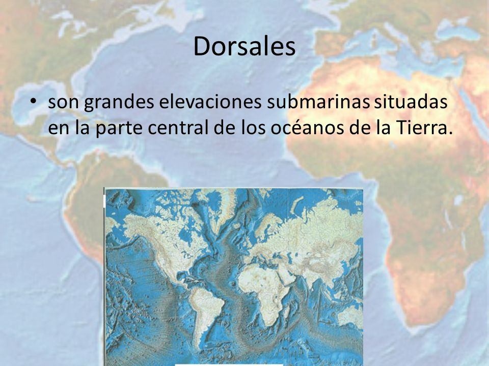 Dorsales son grandes elevaciones submarinas situadas en la parte central de los océanos de la Tierra.