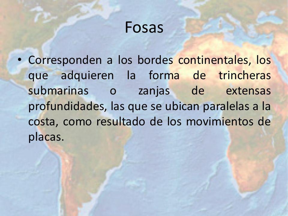 Fosas