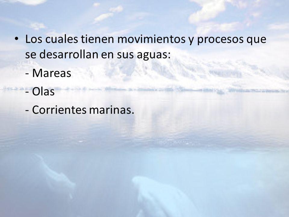 Los cuales tienen movimientos y procesos que se desarrollan en sus aguas: