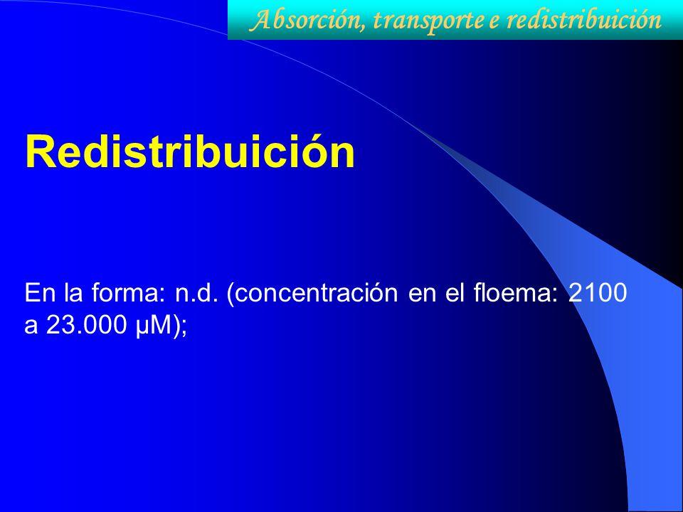 Absorción, transporte e redistribuición