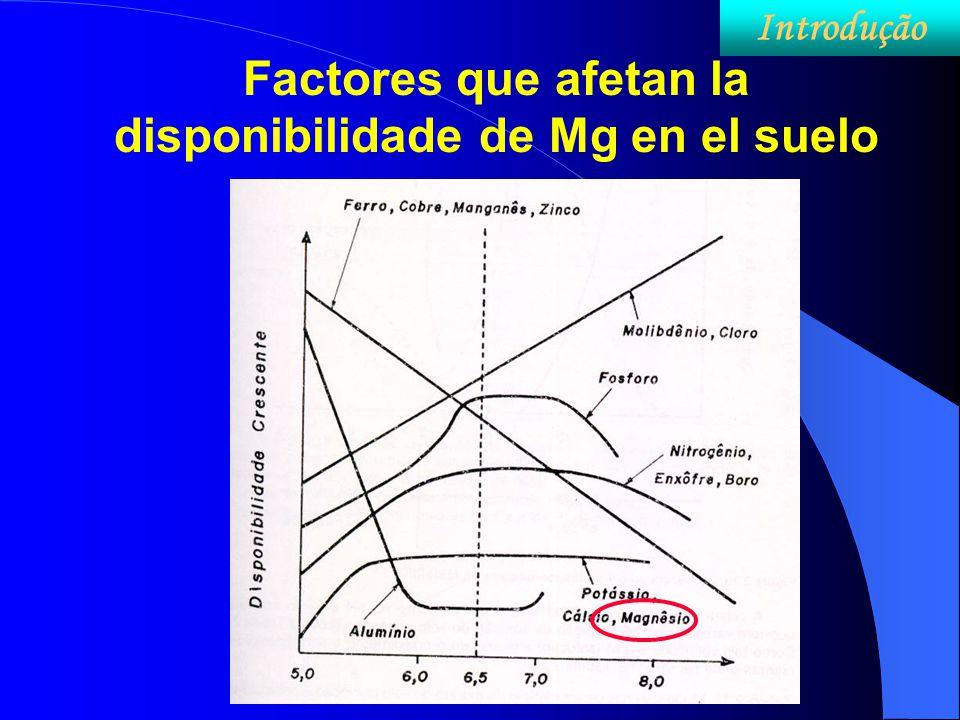 Factores que afetan la disponibilidade de Mg en el suelo