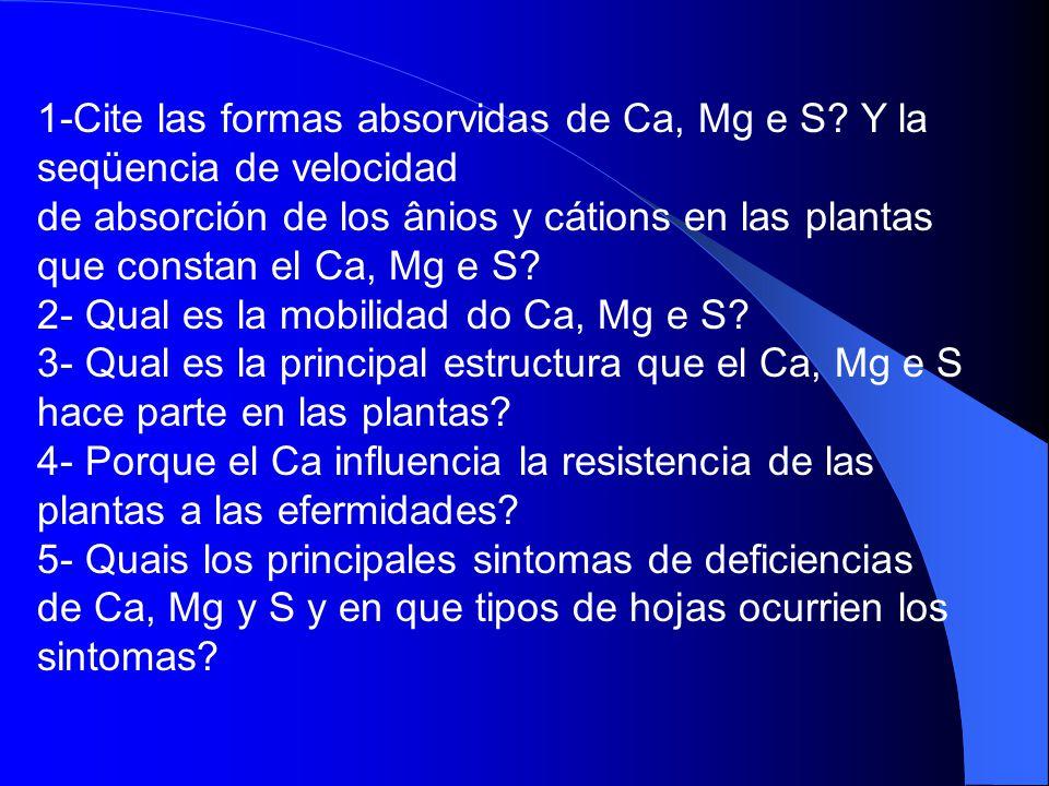 1-Cite las formas absorvidas de Ca, Mg e S Y la seqüencia de velocidad