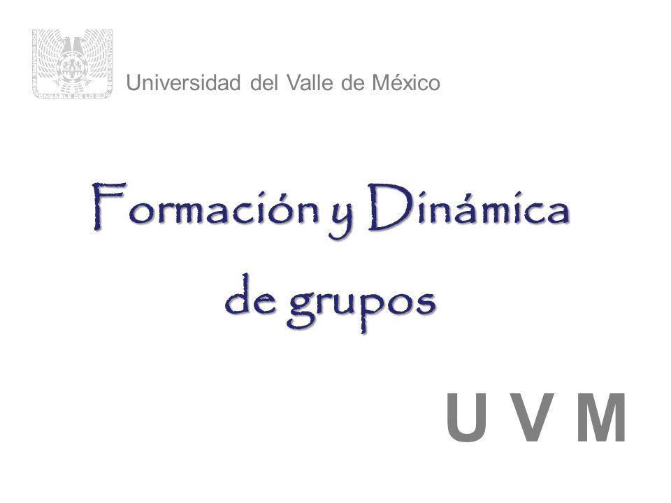 Formación y Dinámica de grupos