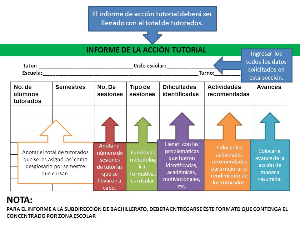 INFORME DE LA ACCIÓN TUTORIAL
