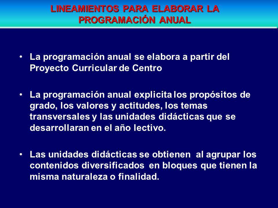 LINEAMIENTOS PARA ELABORAR LA PROGRAMACIÓN ANUAL