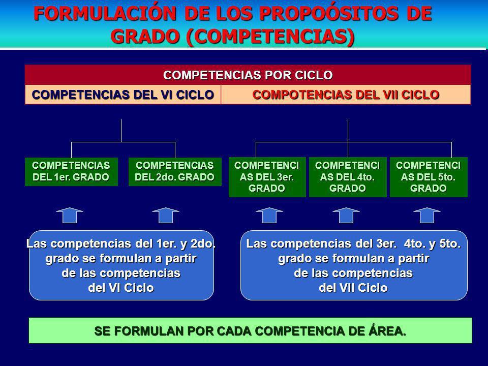 FORMULACIÓN DE LOS PROPOÓSITOS DE GRADO (COMPETENCIAS)
