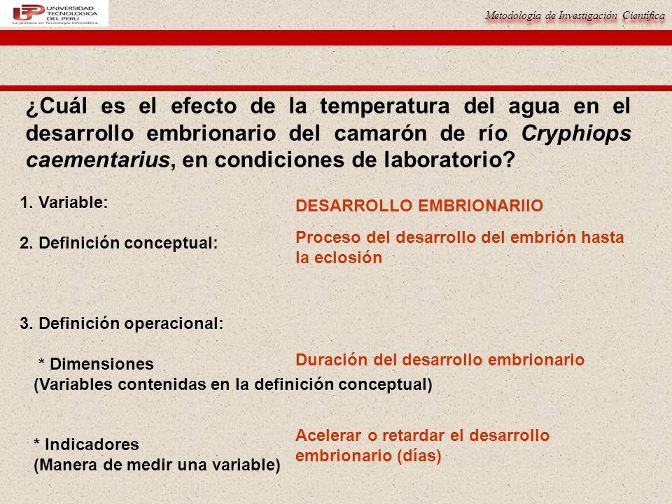 ¿Cuál es el efecto de la temperatura del agua en el desarrollo embrionario del camarón de río Cryphiops caementarius, en condiciones de laboratorio