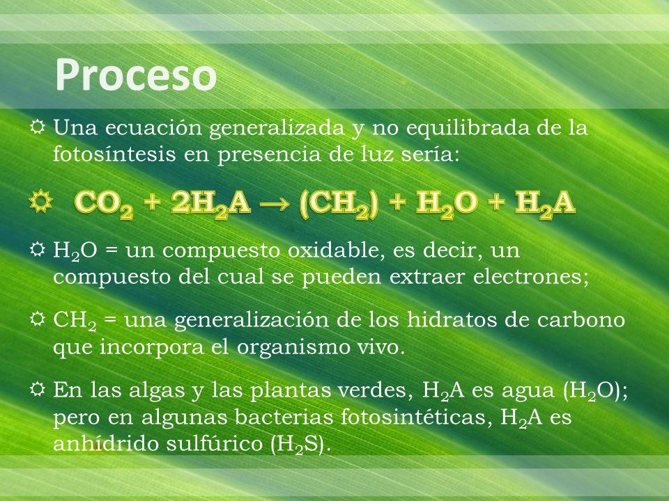 Proceso CO2 + 2H2A → (CH2) + H2O + H2A
