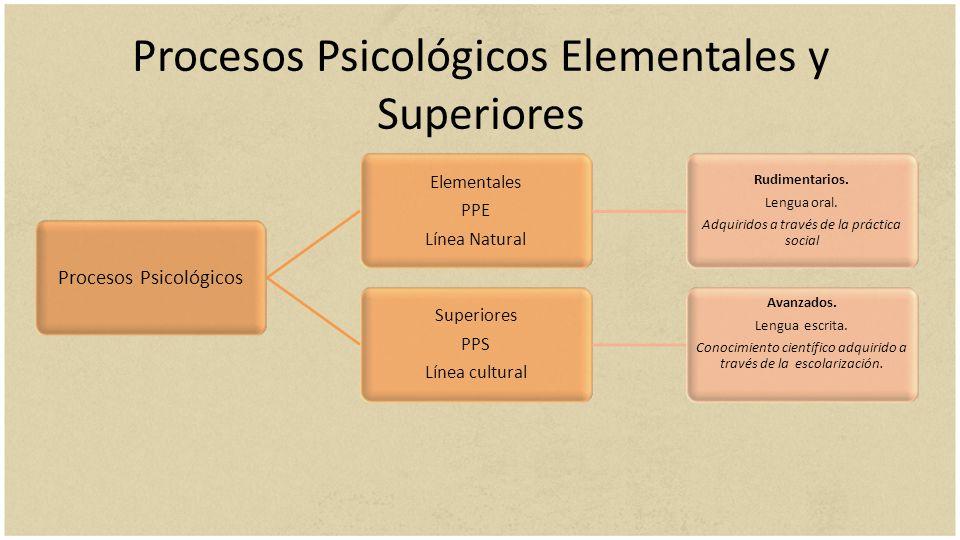 Procesos Psicológicos Elementales y Superiores