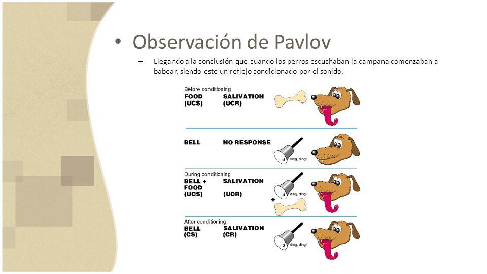 Observación de Pavlov