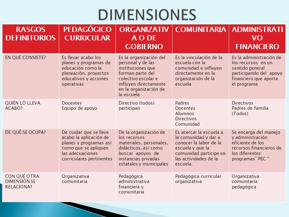 DIMENSIONES RASGOS DEFINITORIOS PEDAGÓGICO CURRICULAR