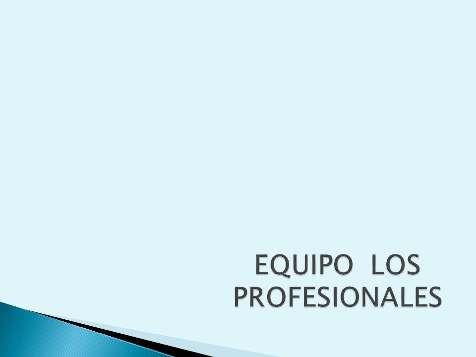 EQUIPO LOS PROFESIONALES