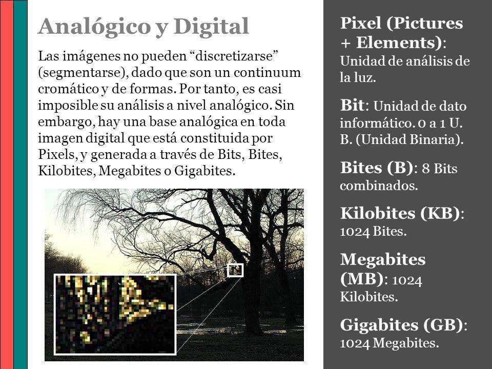 Analógico y Digital