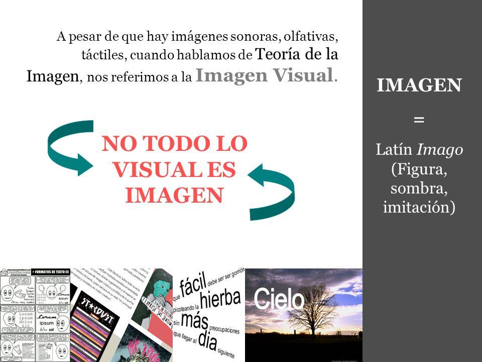 NO TODO LO VISUAL ES IMAGEN