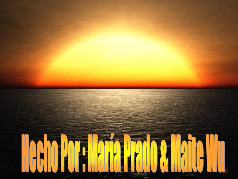 Hecho Por : María Prado & Maite Wu