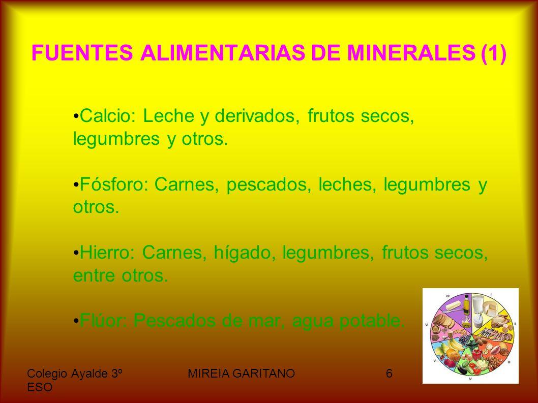 FUENTES ALIMENTARIAS DE MINERALES (1)