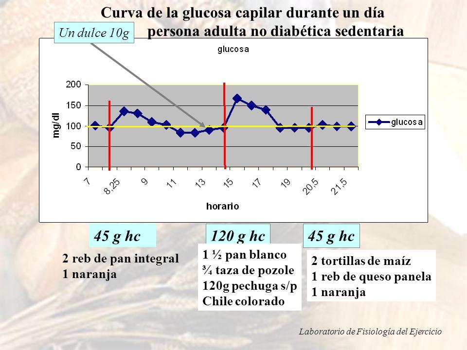 Curva de la glucosa capilar durante un día