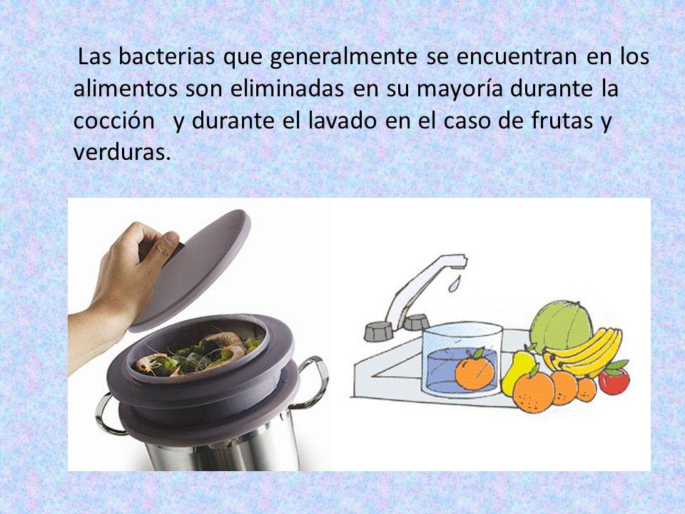Las bacterias que generalmente se encuentran en los alimentos son eliminadas en su mayoría durante la cocción y durante el lavado en el caso de frutas y verduras.