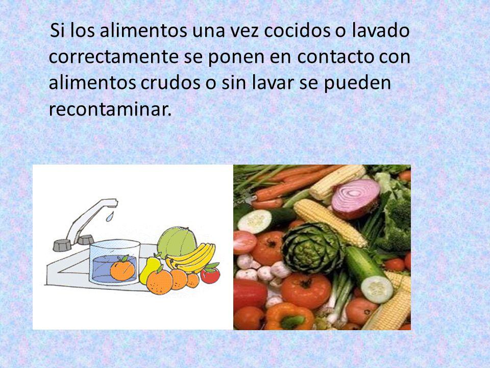 Si los alimentos una vez cocidos o lavado correctamente se ponen en contacto con alimentos crudos o sin lavar se pueden recontaminar.