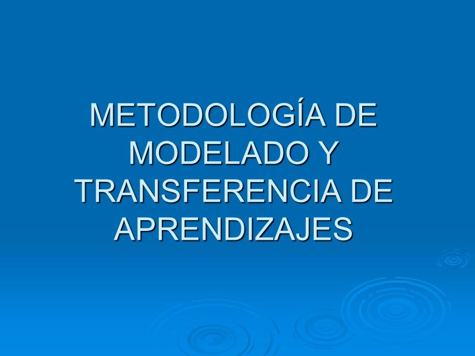 METODOLOGÍA DE MODELADO Y TRANSFERENCIA DE APRENDIZAJES