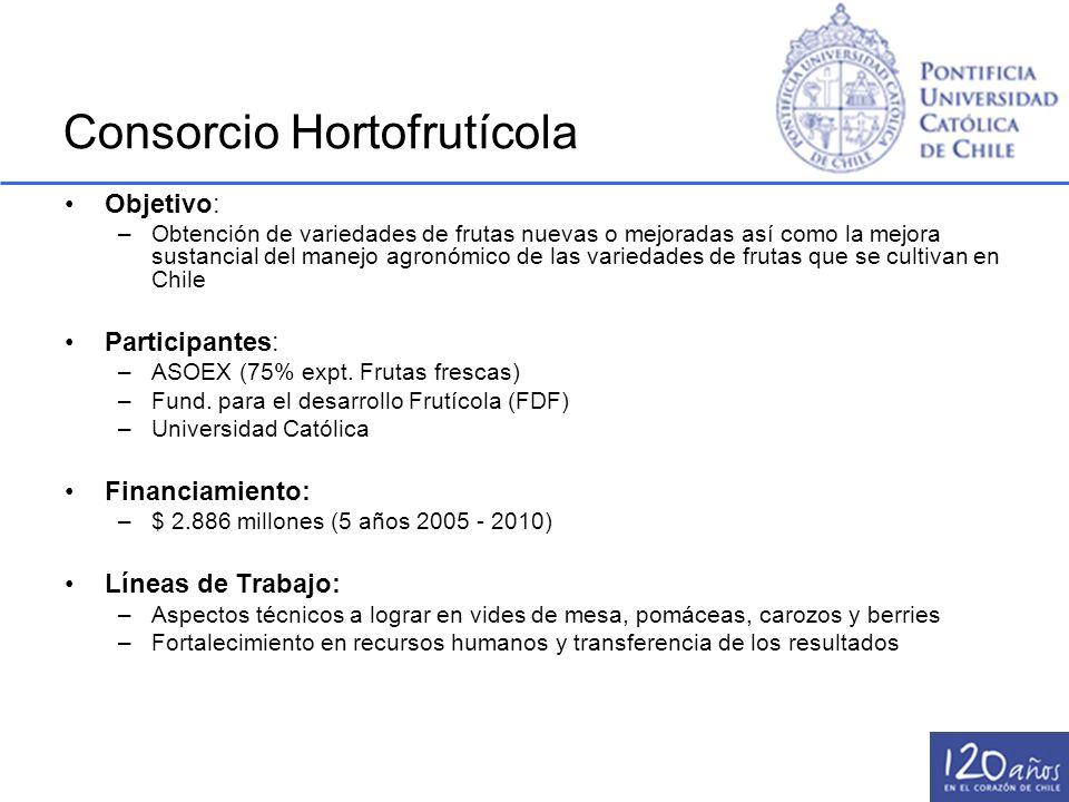 Consorcio Hortofrutícola