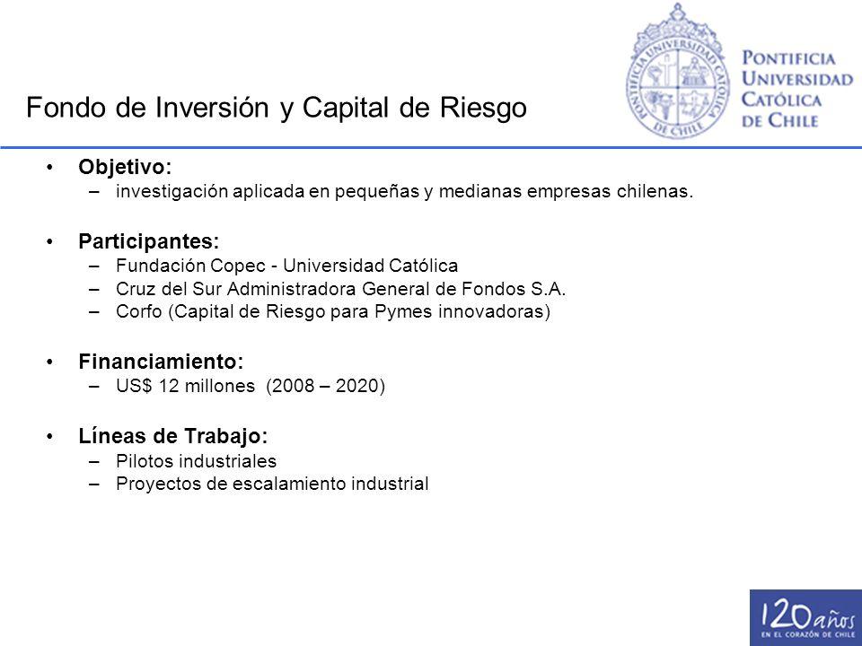 Fondo de Inversión y Capital de Riesgo