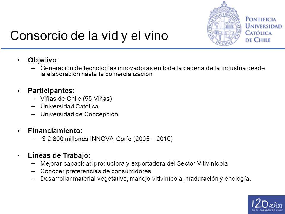 Consorcio de la vid y el vino
