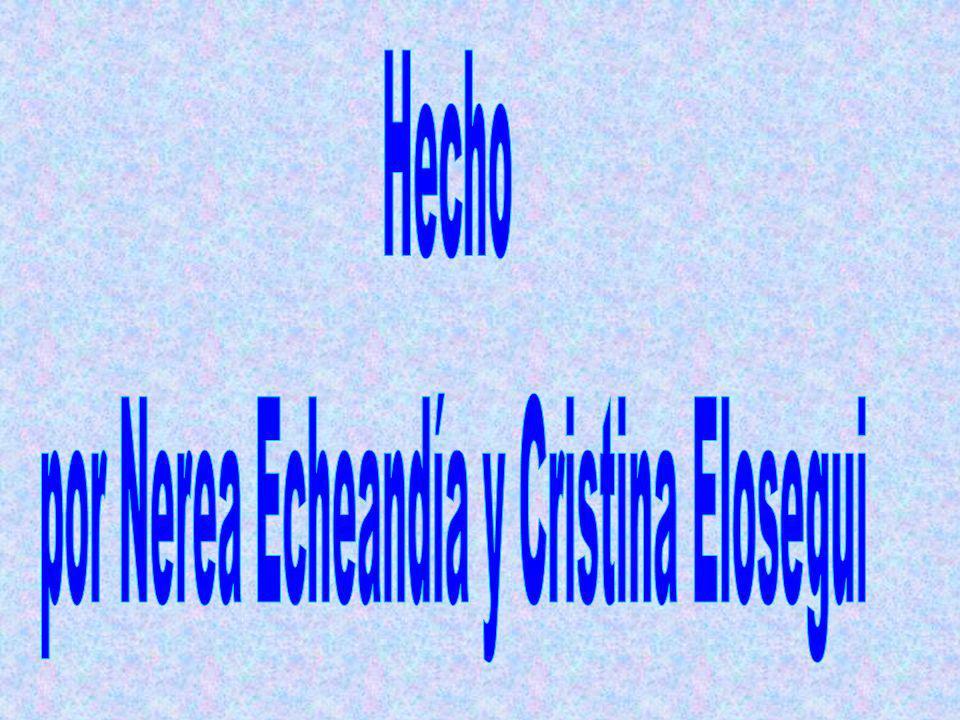 por Nerea Echeandía y Cristina Elosegui