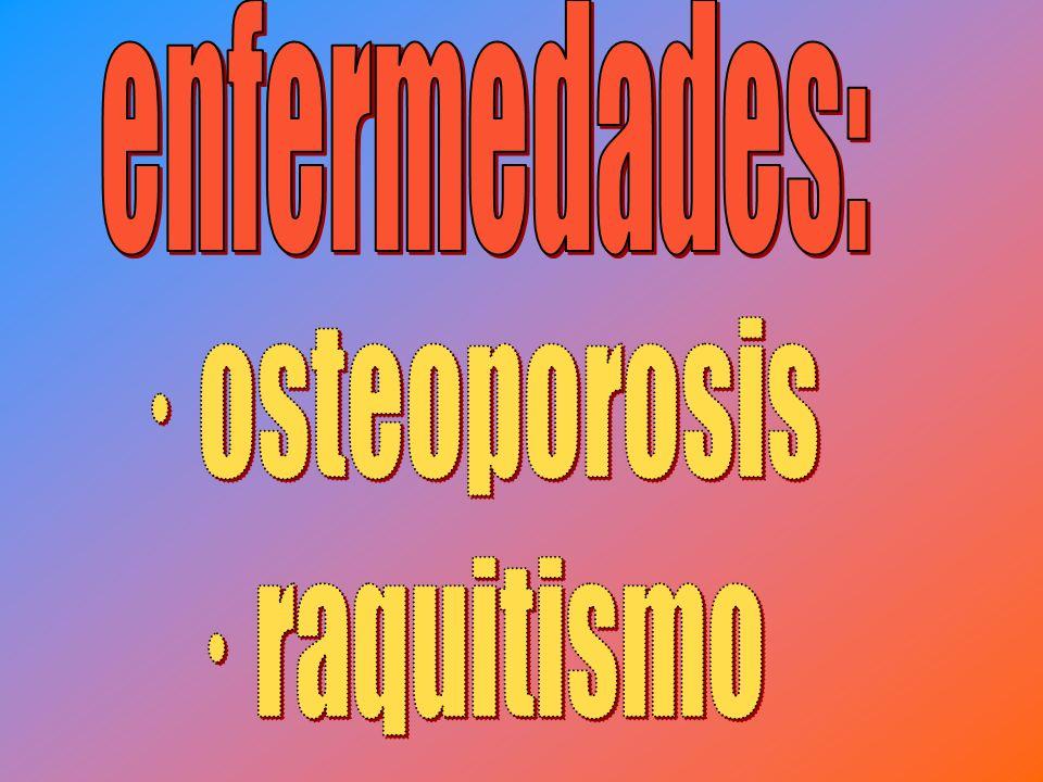 enfermedades: · osteoporosis · raquitismo