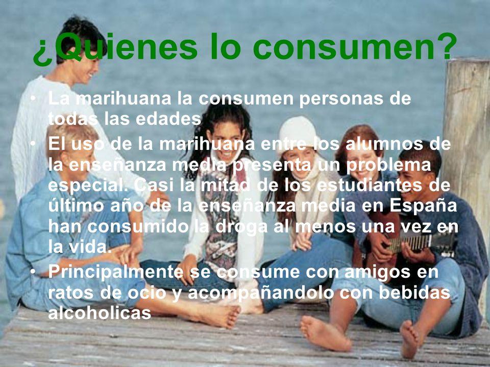 ¿Quienes lo consumen La marihuana la consumen personas de todas las edades.