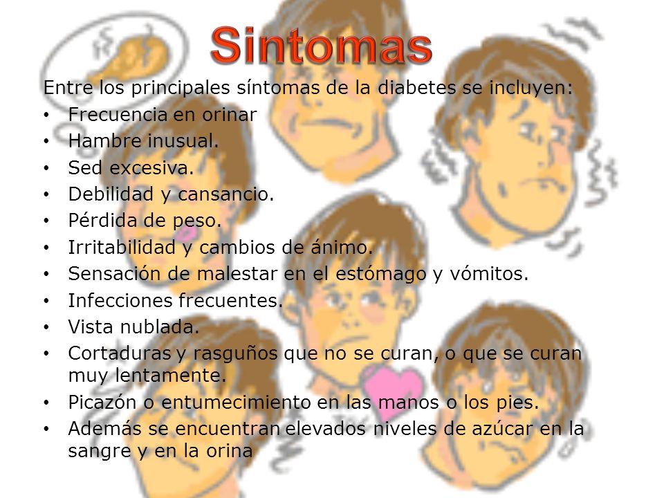Sintomas Entre los principales síntomas de la diabetes se incluyen: