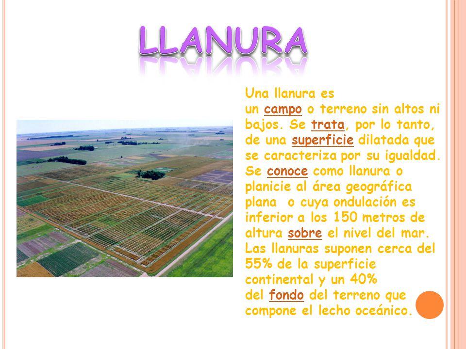 LLANURA Una llanura es un campo o terreno sin altos ni bajos. Se trata, por lo tanto, de una superficie dilatada que se caracteriza por su igualdad.