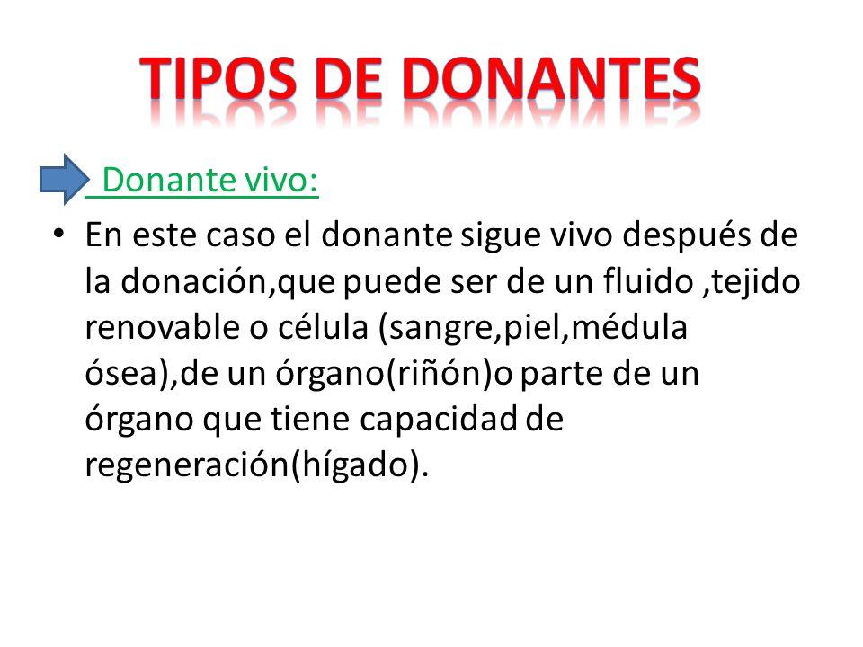 Tipos de donantes Donante vivo: