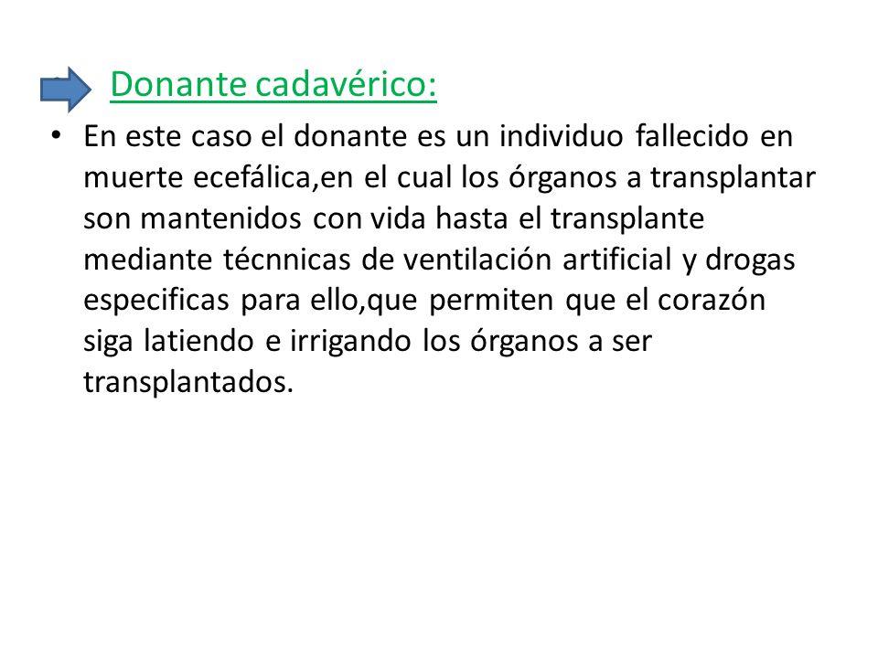 Donante cadavérico: