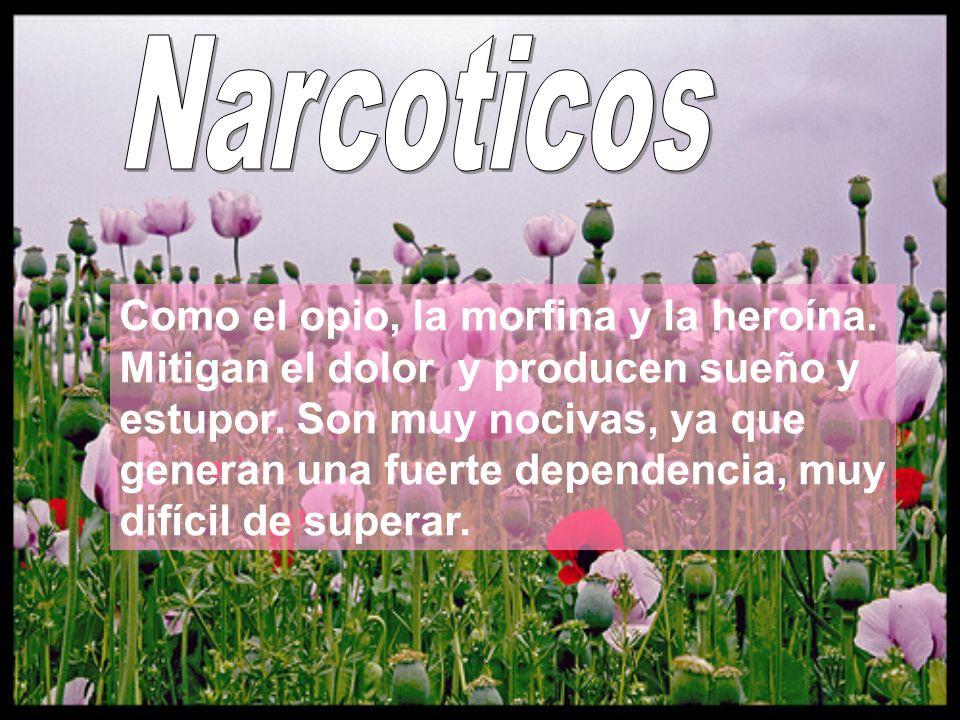 Narcoticos
