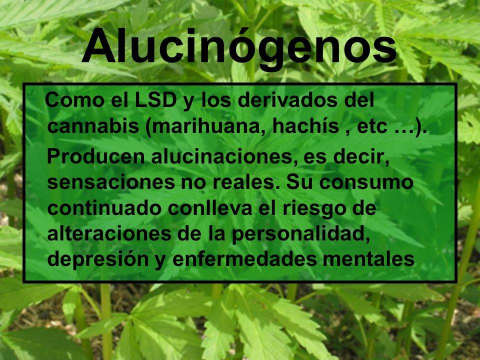 AlucinógenosComo el LSD y los derivados del cannabis (marihuana, hachís , etc …).