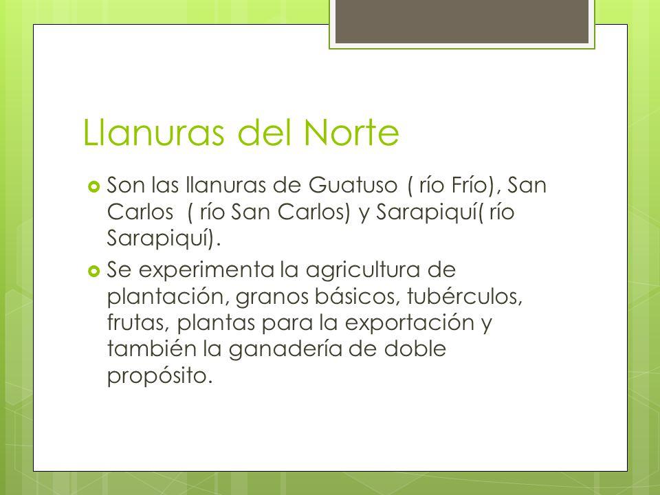 Llanuras del Norte Son las llanuras de Guatuso ( río Frío), San Carlos ( río San Carlos) y Sarapiquí( río Sarapiquí).