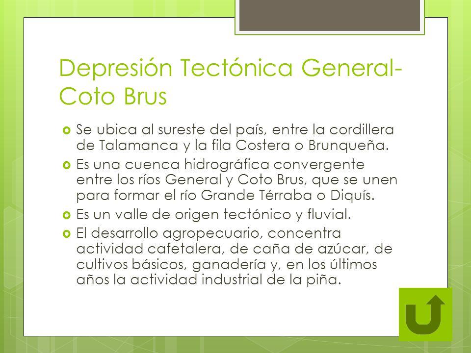Depresión Tectónica General- Coto Brus