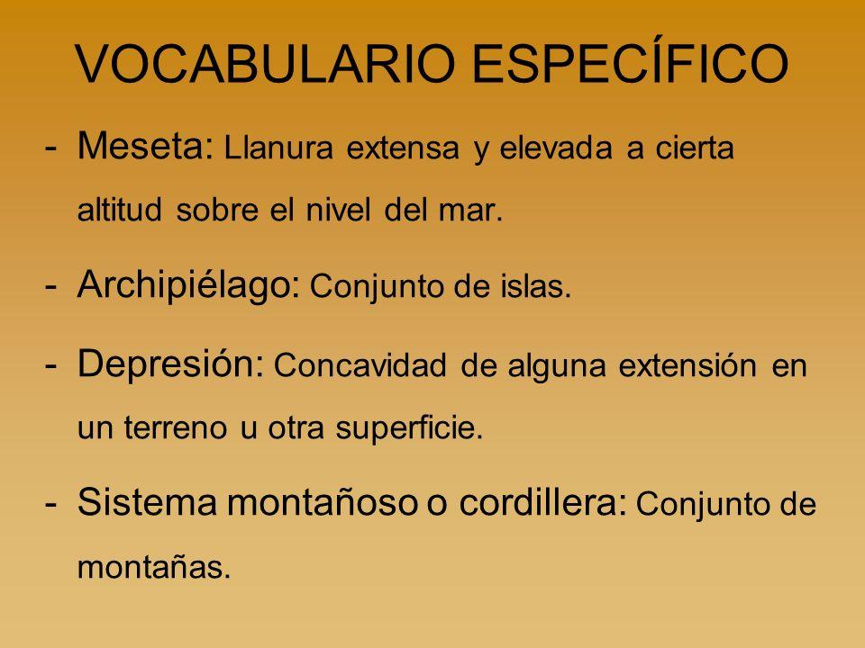 VOCABULARIO ESPECÍFICO