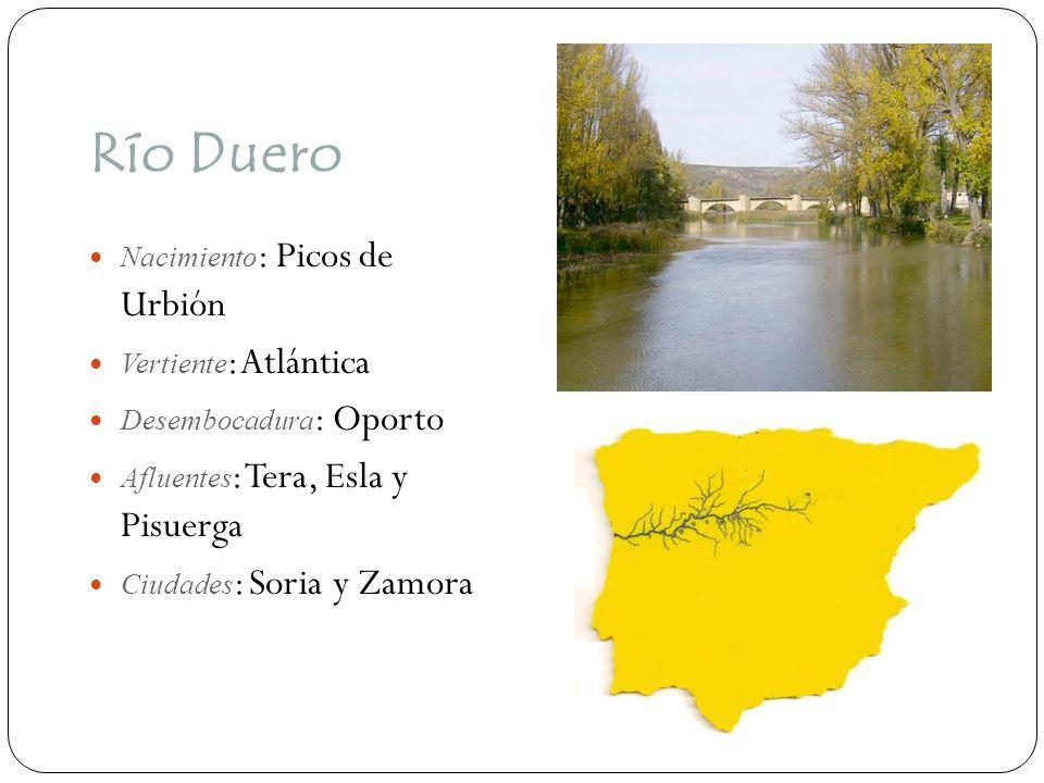 Río Duero Nacimiento: Picos de Urbión Vertiente: Atlántica