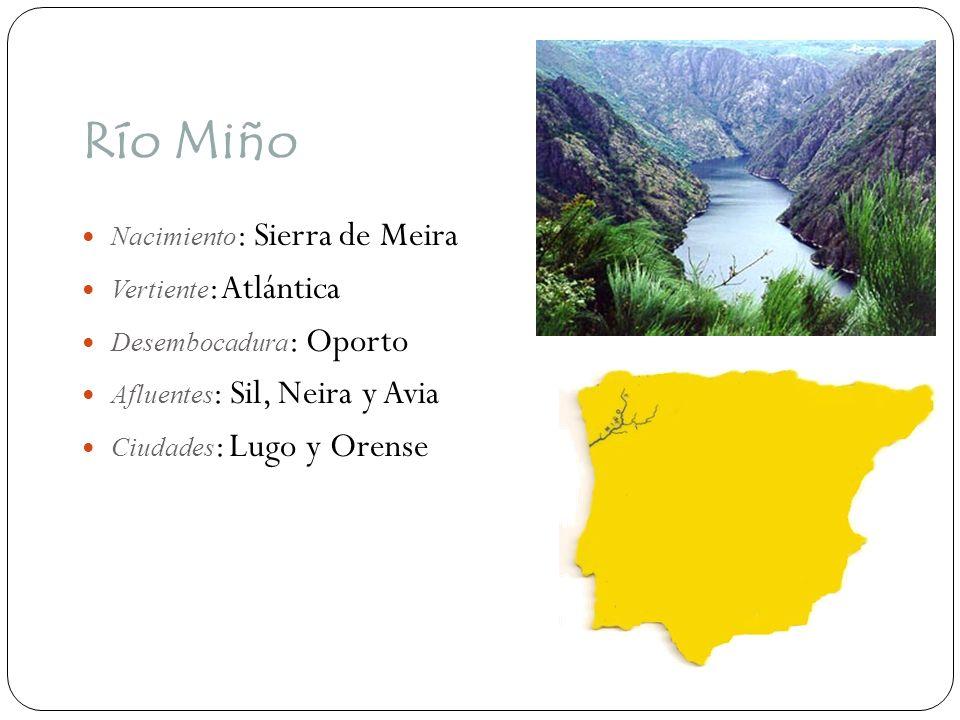 Río Miño Nacimiento: Sierra de Meira Vertiente: Atlántica