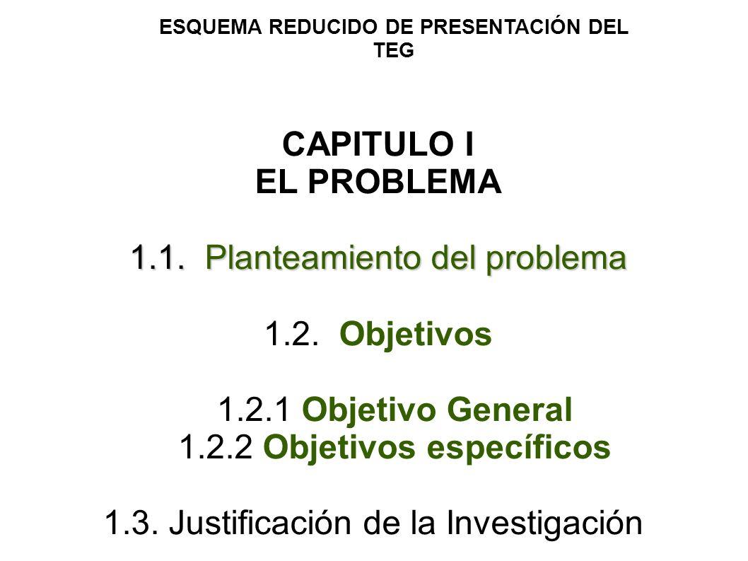 ESQUEMA REDUCIDO DE PRESENTACIÓN DEL TEG