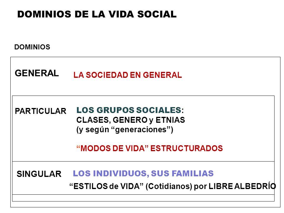 DOMINIOS DE LA VIDA SOCIAL